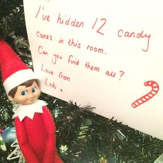 2015 - Day 20: Loki's organised a candy cane hunt #OurElfOnTheShelf #Christmas #ChristmasActivities