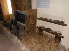 Il contesto ambientale intorno a Geridu, ricostruito dai dati di scavo.