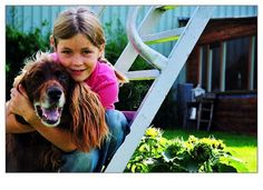 Foster Parent Rescue: How Do I Deal With: Kids Who Hurt Pets