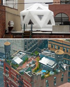 Little village on a NYC rooftop.  Lots of green space.