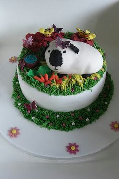 Himalayan guinea pig themed cake. There's even a butterfly on her piggy face!