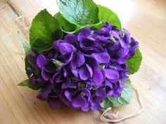 Bouquet de violettes...