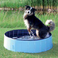 Accessoires chien - Piscine pour chien
