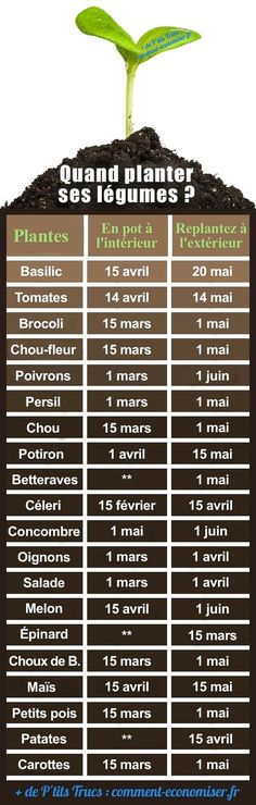 Le Calendrier Pour Ne Plus Se Tromper. When Planting + + + His Vegetables + In + The + Garden +? + The + Calendar + To + Do + More + + If Deceive. Potager Garden, Garden Planters, Vegetable Garden, Garden Bed, When To Plant Vegetables, List Of Vegetables, Planting Vegetables, Permaculture, Organic Gardening