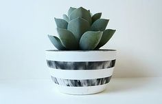 Concrete and succulents! Concrete Planters, Planter Pots, Types Of Plants, Potted Plants, Garden Inspiration, House Plants, Tea Lights, Decorative Bowls, Succulents
