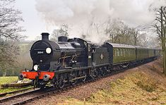 Q-class northbound at Milepost 10 - Steve Lee - 1 January 2020 Sheffield Park, Southern Railways, Train Service, Old Trains, Steam Locomotive, East Sussex, Days Out, Travel Style, Trains