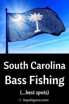 5 Top Places To Go Bass Fishing Around South Carolina:  1. Lake Monticello 2: Lake Murray 3: Lake Jocassee 4: Lake Moultrie 5: Lake Greenwood