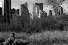 by Stuart Franklin Central Park, 1988