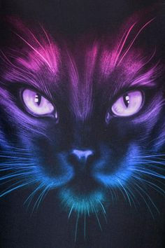 Katzen Colorful cat leotard, leotard What Is The Point Of School Uniforms? Cat Wallpaper, Animal Wallpaper, Wallpaper Space, Warrior Cats, Cat Diseases, Image Chat, Curious Creatures, Outdoor Cats, Cat Photography