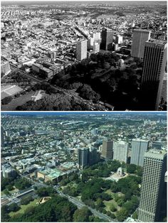 South East view over Hyde Park from Sydney Tower 1981 > [Stuart McPherson > Curt Flood. By Curt Flood] Sydney City, Hyde Park, Continents, City Photo, Tower, Australia, History, Live, Art