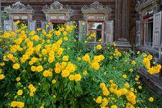 Два удивительных затерянных дома в Костромской области - История красоты