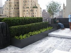 Planters on roof terrace - however maybe only 2 levels so doesnt become a puppy stair...