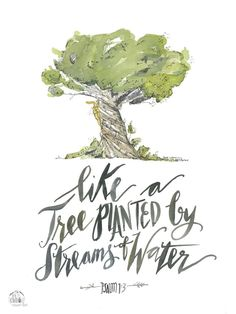 He is like a tree planted by streams of water that yields its fruit in its season, and its leaf does not wither. In all that he does, he prospers.
