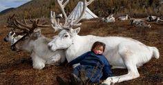 古老馴鹿民族的土地