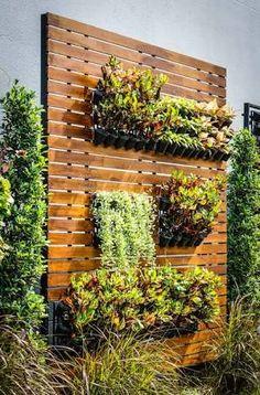 Jardins Verticais #jardimvertical #jardim #verical