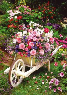 This delightful still-life puzzle with its stunning floral design is made to be treasured. The lovely vintage wheelbarrow and beautiful flower bouquet will keep you fascinated as you put the pieces in place. A must for the green fingered puzzler!