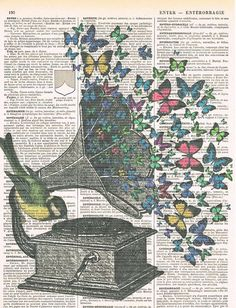 Butterflies.Bird.Music.Gramophone.Collage.Fantasy