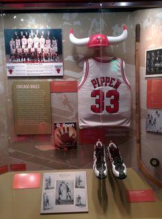 Chicago Bulls and Blackhawks Chicago History Museum, Chicago Bulls