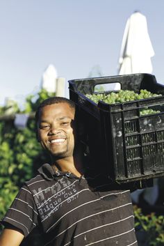 Happy harvest :) Wines, Harvest, Bubbles, Happy, Ser Feliz, Being Happy