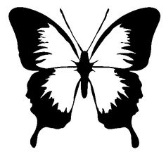 black and white butterfly tattoo design tattoos by karlee kuehn rh pinterest com butterfly clipart black background butterfly clipart black
