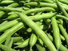 Eat Raw Green Beans for a Wide Array of Nutrients