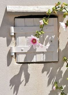 Cottage window , pink flower