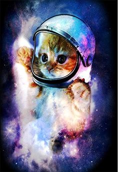 Best Seller QH Galaxy Cat Printing Velvet Plush Throw Blanket Comfort Design Home Decoration Fleece Blanket Perfect Couch Sofa Travelling 58 x 80 online - Favoritefurniture Galaxy Cat, Cat Mouse, Cat Posters, Comfort Design, Shabby, 5d Diamond Painting, Diamond Drawing, Space Cat, Buy A Cat