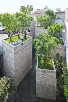 house for trees ~ vo trong nghia architects