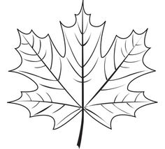 Maple Leaf - 3Doodler                                                                                                                                                                                 More