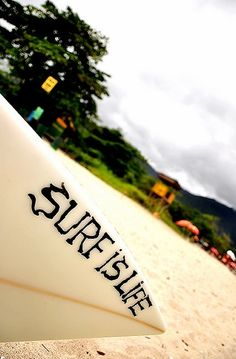 """""""Surf if LIFE"""" I want to learn how to surf. Who wants to teach me?"""