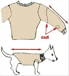 How To Turn Old Sweaters and Sweatpants Into No-Sew Dog Sweaters in Dogs dog coats Pet Sweaters, Small Dog Sweaters, Old Sweater, Dachshund Clothes, Cute Dog Clothes, Small Dog Clothes Patterns, Dog Sweater Pattern, Dog Pattern, Diy Pour Chien