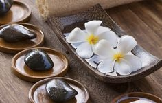 Experience unrivaled luxury and holistic wellness combined with Endless Privileges® at Zoetry Wellness & Spa Resorts!