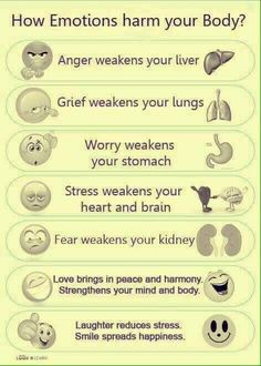Acupressure Stress How Emotions Harm or Help Your Body Health And Beauty, Health And Wellness, Health Tips, Health Fitness, Mental Health, Health Facts, Health Education, Health Bar, Raw Beauty