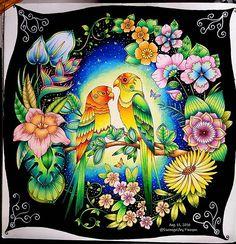 4377 Best ColorBooksJohanna Basford Images On Pinterest