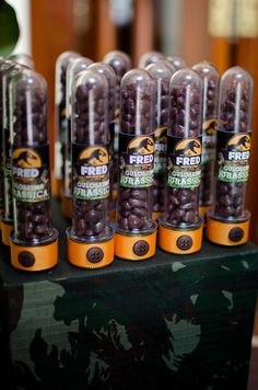 O Parque dos dinossauros do Fred - a festa pronta
