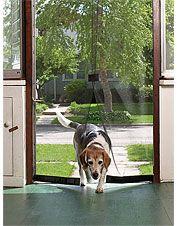 Just found this Instant Magnetic Screen Door - Instant Screen Door -- Orvis on… Magnetic Screen Door, Diy Screen Door, Sliding Screen Doors, Sliding Glass Door, Mesh Screen, Porches, Instant Screen Door, Screen Plants, Pet Door