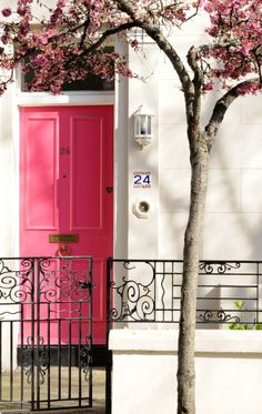 Pink door and blossoms. Pretty.