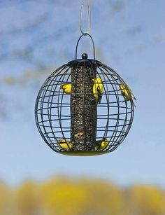 Globe Cage Bird Feeder: Perfect for Small Birds and Keeps Jays, Squirrels and other Feeder Bullies Out