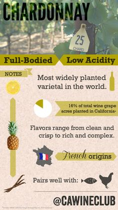 Here are all the things you need to know about Chardonnay! #CaWineClub #wine #winefacts #chardonnay #chardonnayfacts #infographic