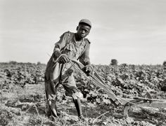 dorothea lange photographs |The Great Depression