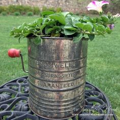 Our Southern Home   HGTV Gardens {Sifter Planter Photo Excitement}   http://www.oursouthernhomesc.com