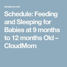 Schedule: Feeding and Sleeping for Babies at 9 months to 12 months Old – CloudMom
