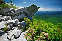 gghiker on flickr, featured in Daily Ray of Hope. Tanawha/Rough Ridge Trail in NC