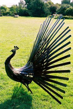 Peacock - Alan Williams metal sculpture anvil ironworks outdoor artist ...