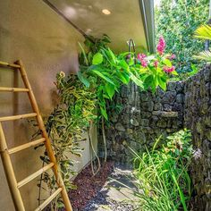"""A lovely outdoor shower, Hawaii style.  Luxury Hawaii Home. Photo by @PanaViz"