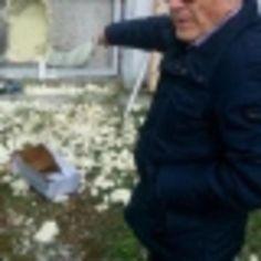 #Abruzzo: #Sfondano la cella frigorifera e portano via carne e torte da  (link: http://ift.tt/1W8OiSm )