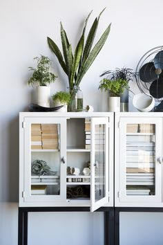 white cabinets and plants