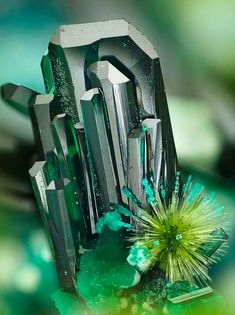 Atacamite, with Libethenite spray, Chile. Minerals And Gemstones, Rocks And Minerals, Caillou Roche, Beautiful Rocks, Beautiful Pictures, Rock Collection, Mineral Stone, Rocks And Gems, Stones And Crystals