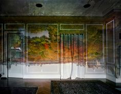 Bringing the outside in (Camera Obscura Image of Central Park Looking North, Fall) #onekingslane ,Camera Obscura bringing the outside in, Camera obscura photography by Mauricio Asial wall murals  February 2015