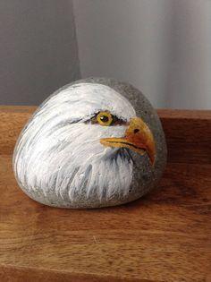 Una cabeza calva eagle rock con pintura acrílica. Precio